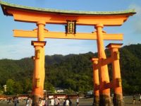 Hiroshima Miyajima Island (28)