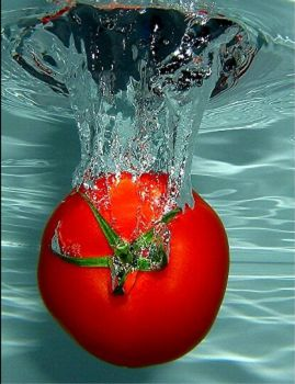 SPLASH!!!! Can't wait for fresh tomatoes :)