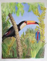 Toucan (paint like this!)