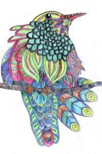 Birds Coloring Hummingbird