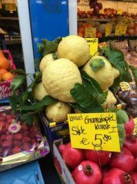 XL lemons