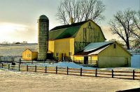 Themes: Yellow Barn
