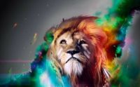lion_fire_art_wallpapers_3