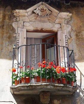 Potted Balcony 7