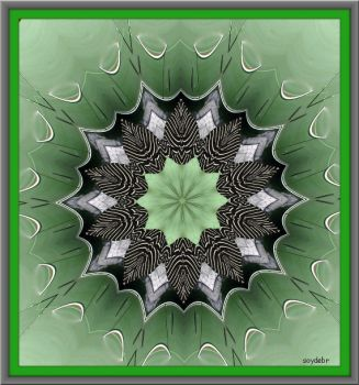 Green with black kaleido