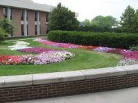 Botanical gardens at MSU (3)