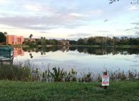 Coronado Springs-Florida-3104x2270