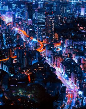 The Beautiful City of Tokyo