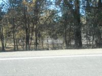 Deer Creek Fire - 150 year old homestead burned to the ground