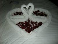 Rose petals and towels