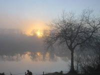 Foggy Whanganui River NZ