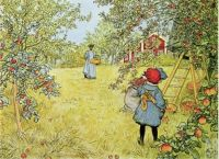 The Apple Harvest - Carl Larsson