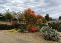 AZ landscape December 16-2-18