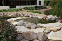 Hospital gardens3