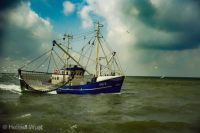 7.7 Ostfriesland am Nordsee