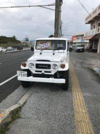 Okinawa Land Cruiser