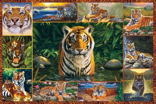 Tigers_Galore_Ravensburger_Jigsaw_Puzzles