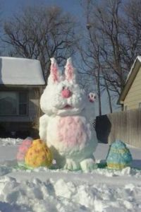 Wichita Snowbunny