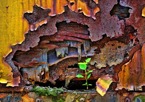 Colourful Rust