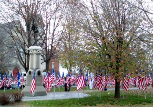 To Honor Our Veterans