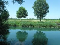 Reflections on the Brancolo channel