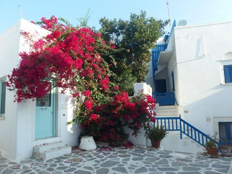 Greece, Paros - Parikia 2