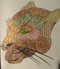 Panther - coloring book