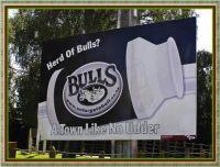 Herd of Bulls?