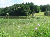 Gradiško jezero - Lake Gradišče