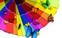 Rainbowpaperpaint
