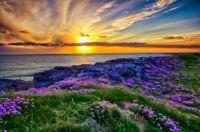 Beautiful sunset at Tangasdale Beach