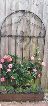 Jane's Gate