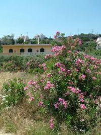 Crete 092