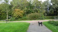 A walk, October 13. #3