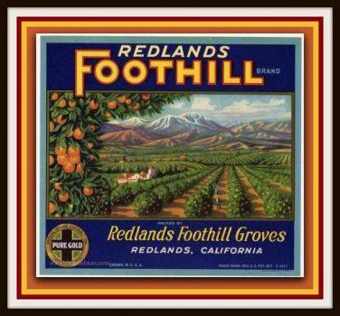 Vintage Fruit Crate Labels Depicting the Foothills