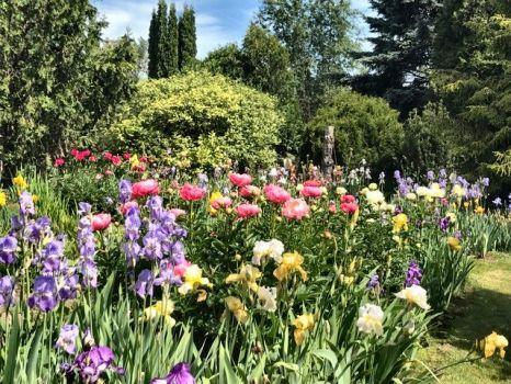 Brooks Garden