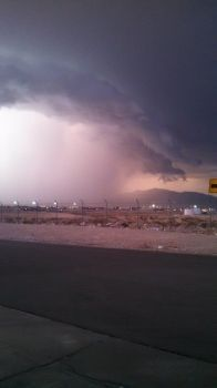 Vegas Storm