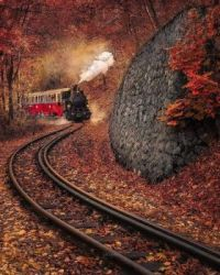 Autumn Express In Hungary