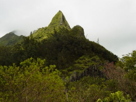 2,000' Coolau Clifs in Ahuimanu Valley - Hawaii