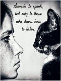 """3  ~  """"Animals do speak, but only ...."""""""