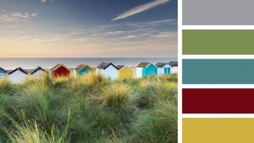The Backs of Beach Huts