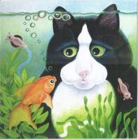 Black Cat & Fish tank