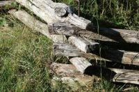 Split Rail Fence, Tennessee