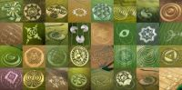 Photos Of Crop Circles!