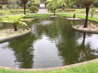 Pond in the botanical garden in Angra do Heroismo, Terceira, Azores, Portugal