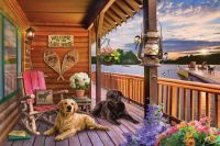 Dogs Relaxing on The Porch