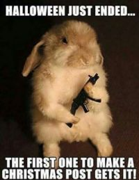 Rabbit with gun