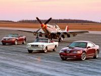 Family of Mustangs