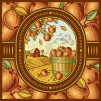 Themes Vintage illustrations/pictures - apples