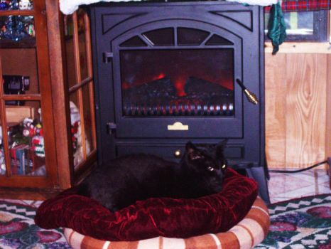 phyce in front of fireplace